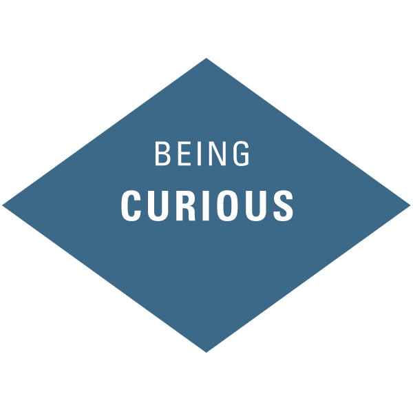 atwork-icons-beingcurious[1].png