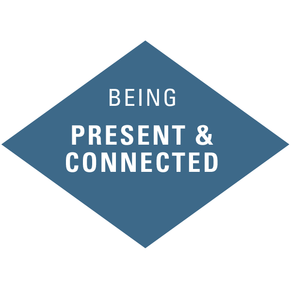 atwork-icons-beingpresentconnected.png